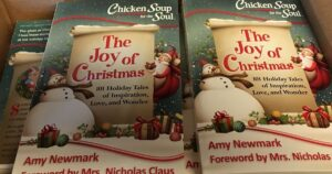Chicken Soup The Joy of Christmas